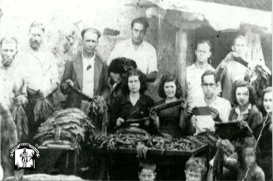 Historia del Tabaco en La Palma · Puros Artesanos Julio · Canarias · Puro Arte Palmero